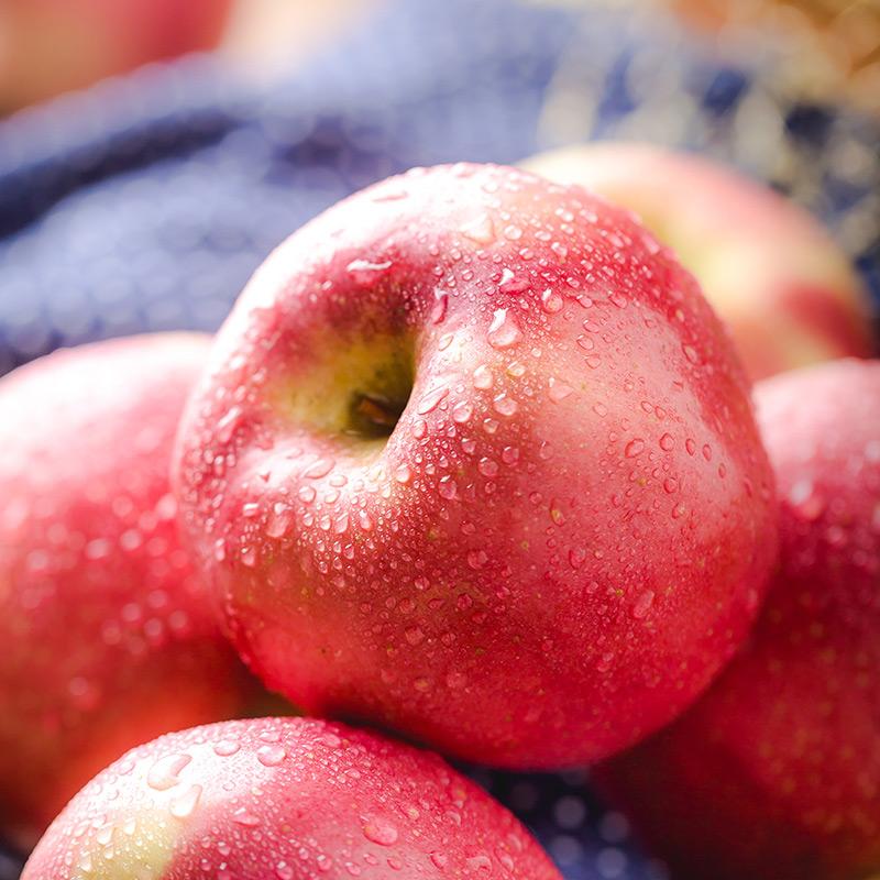 美国红玫瑰Rose苹果4个220g以上/个 新鲜水果 进口苹果
